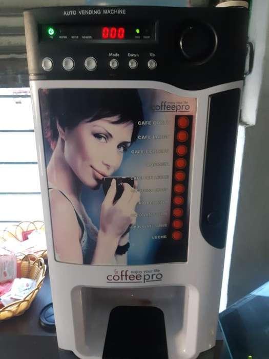 Caffe Pro 10 Variedades