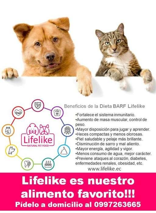 Dieta Barf - Alimento para Perros y Gatos - Lifelike