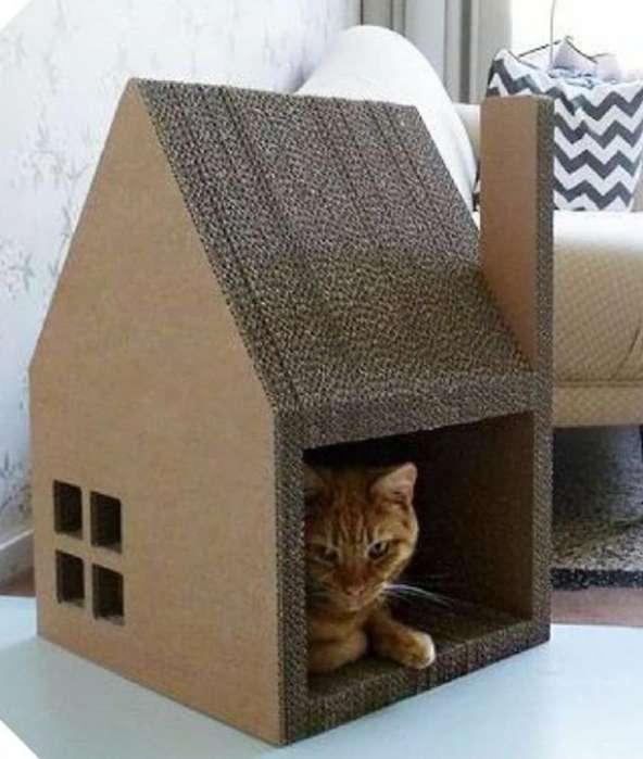 Casa Rascador de Gatos