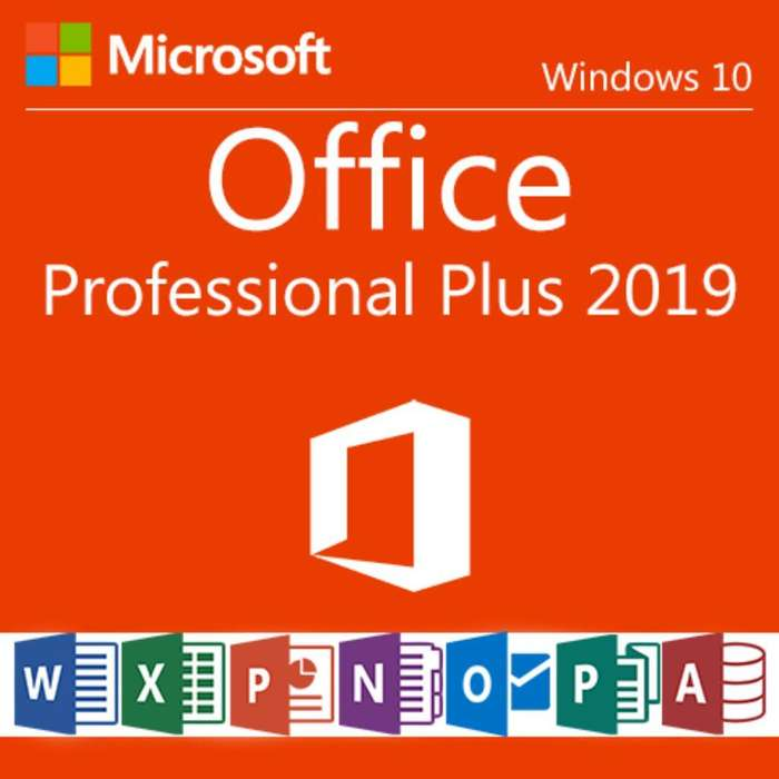 Office Profesional 2019 180