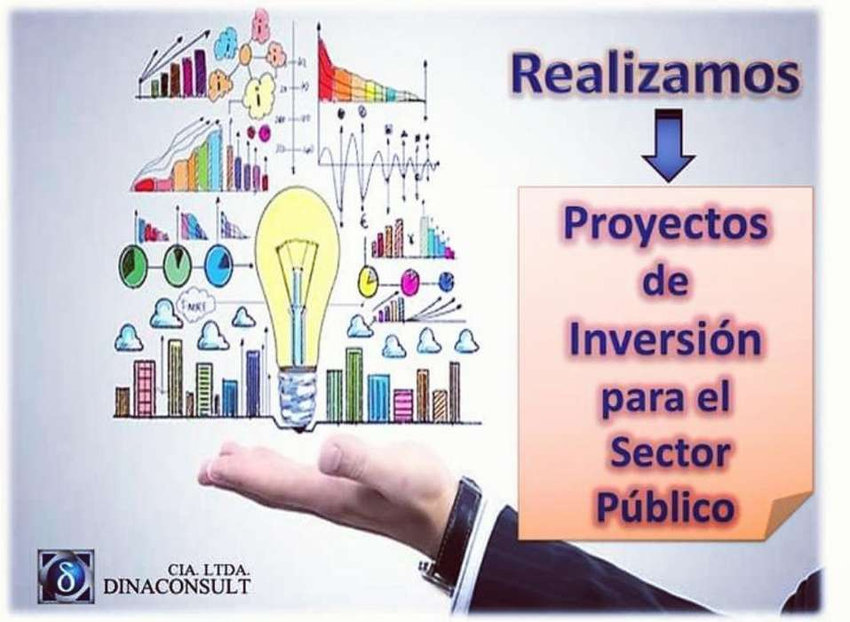 Proyectos para El Sector Público