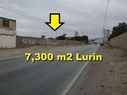 Vendo Terreno de 7,300 m2 en Lurin