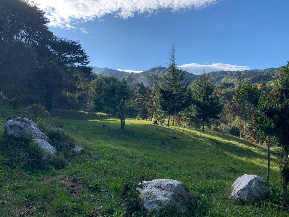 Venta lote El Tablacito, Rionegro - wasi_1642393