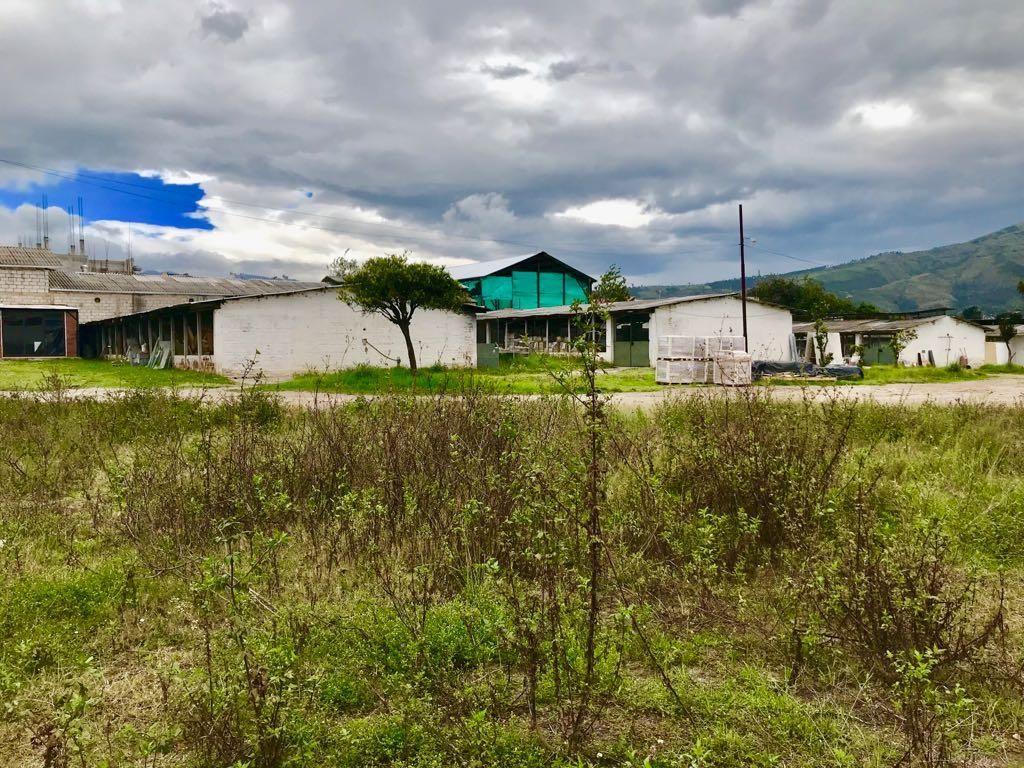 VENDO TERRENO TUMBACO 5778M2 PARA CONSTRUCTOR DE CONJUNTOS HABITACIONALES