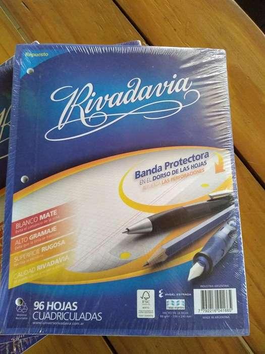 Repuesto De Hojas Cuadriculadas Rivadavia X96 Hojas