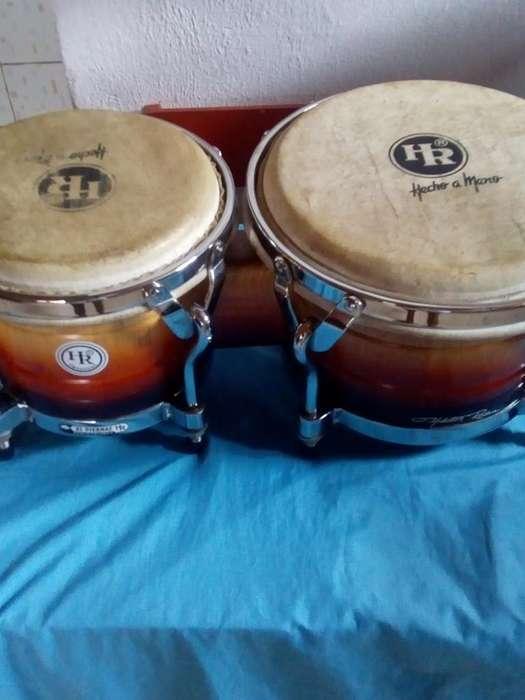 Bongo Hr con Estuche Watsap 3226542996