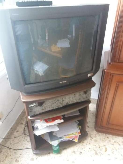 Vendo Tv 29 Pulgadas Sony Y Mesa.