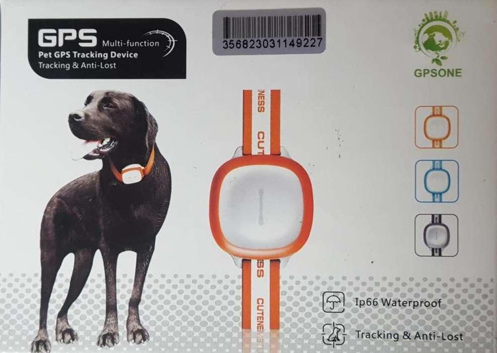 Gps Para Mascotas Collar Reflectivo Gratis