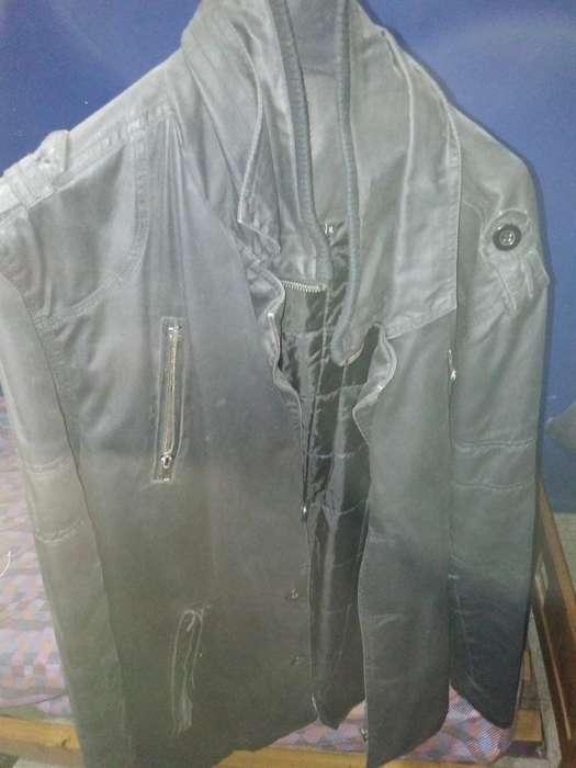 Campera de Invierno Y Camisa Original