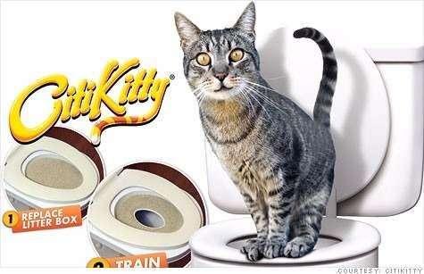 Envio Gratis Kit De Formación Del Tocador De Gato Citikitty