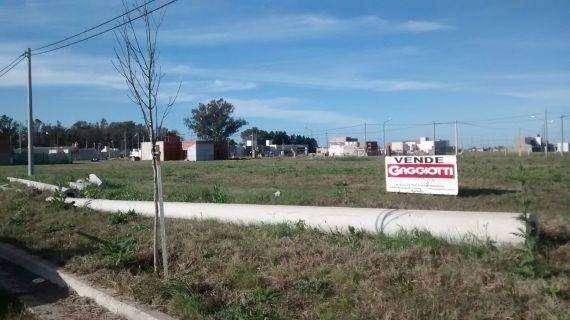 Bv. Hipolito Irigoyen 00 - Lote - Gaggiotti Inmobiliaria