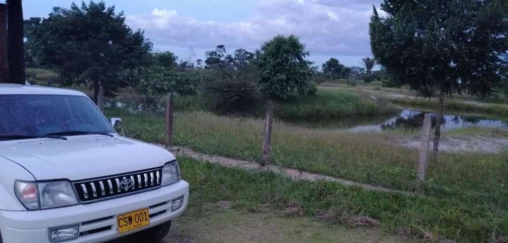 Toyota Prado 2002 - 162800 km