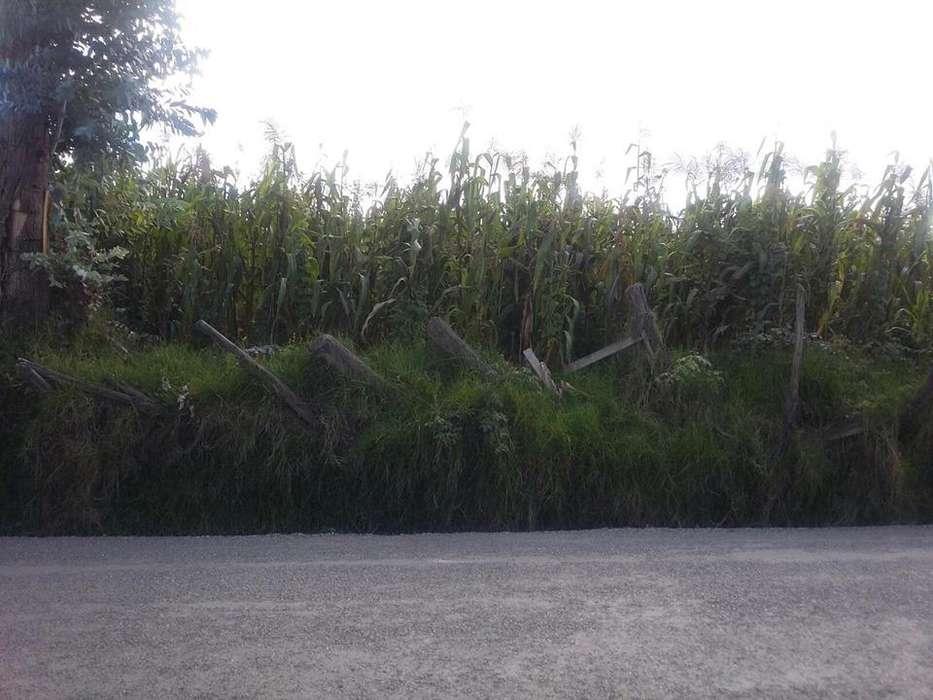 Terreno <strong>plano</strong> de 517 mts en Ricaurte sector cuatro esquinas
