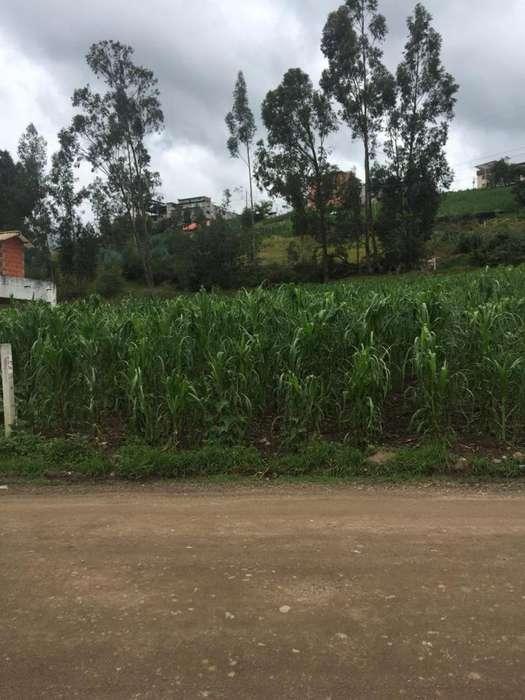 Terreno en el sector del Centro de Revisión Vehicular de Mayancela 835m2