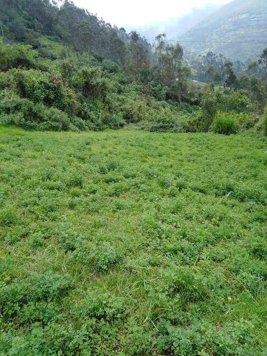 Se Vende Terreno en Kerapata, Tamburco
