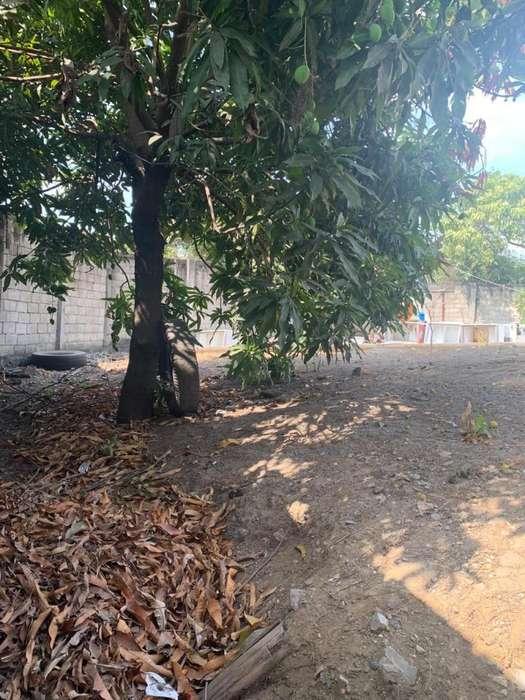 Venta de Terreno en Samanes 7 sector Adesdac
