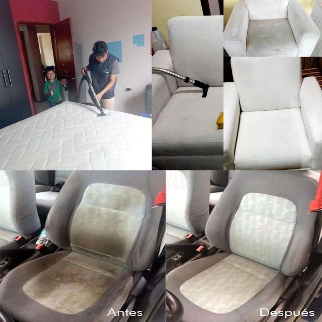 Limpieza de Muebles,vehículo, Alfombras.