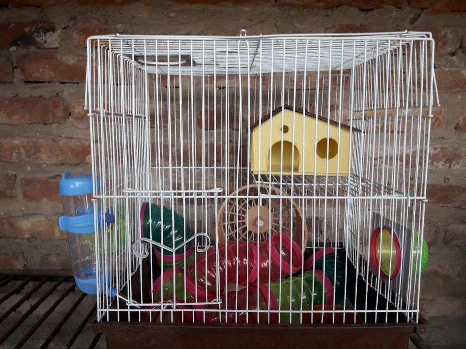 Vendo Jaula Hamster