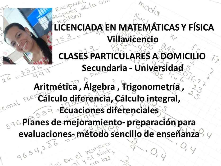 313 882 61 78 Profesora clases Matemáticas y Física Domicilio