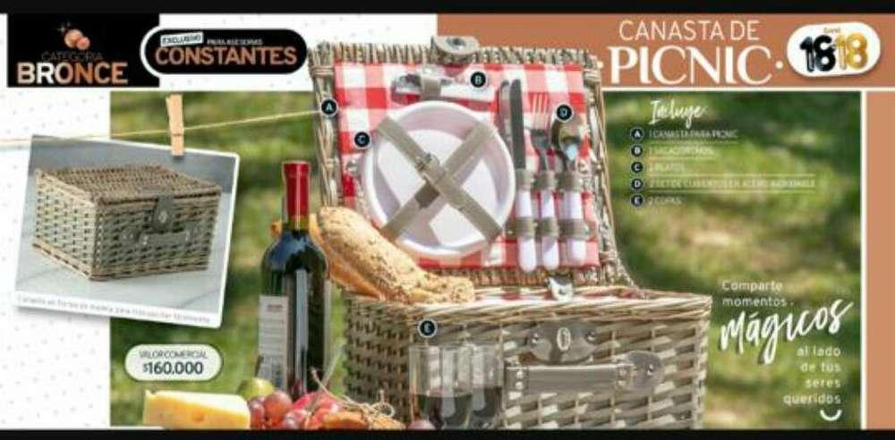 Vendo Canasta para Picnic con Todo