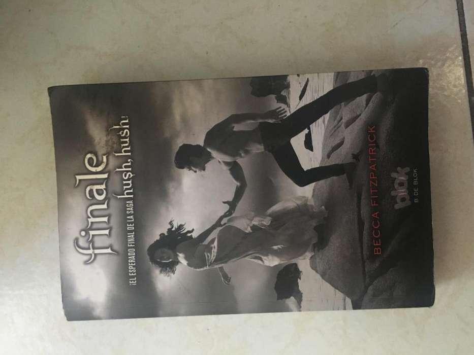 Libro Finale en español