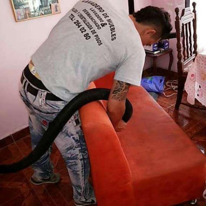 Lavado Muebles Colchones Tapete Seco