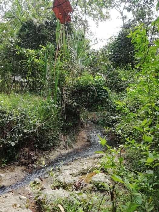 Vendo Lote Rural en El Pital Cauca de 25