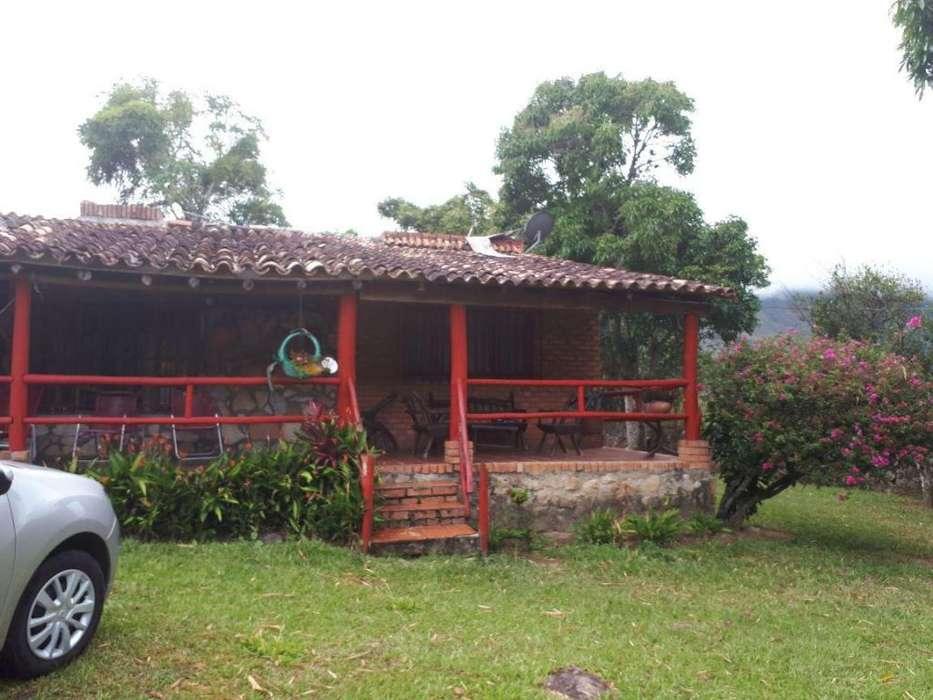 Cabaa Chinacota