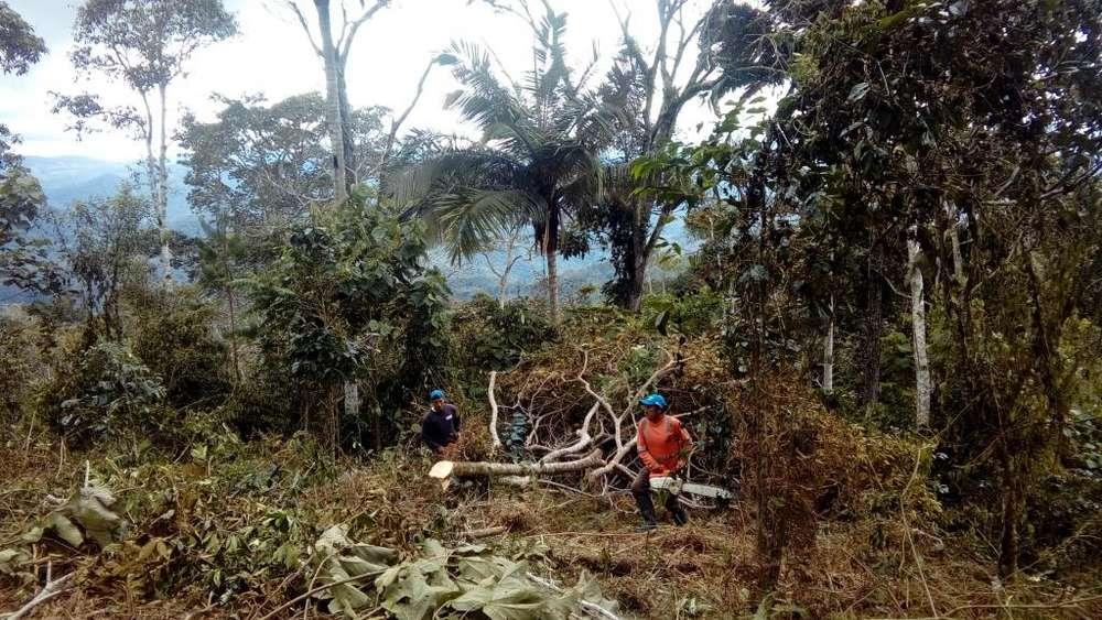 vendo terreno para agricultura ganaderia o reforestacion,cuenta con agua