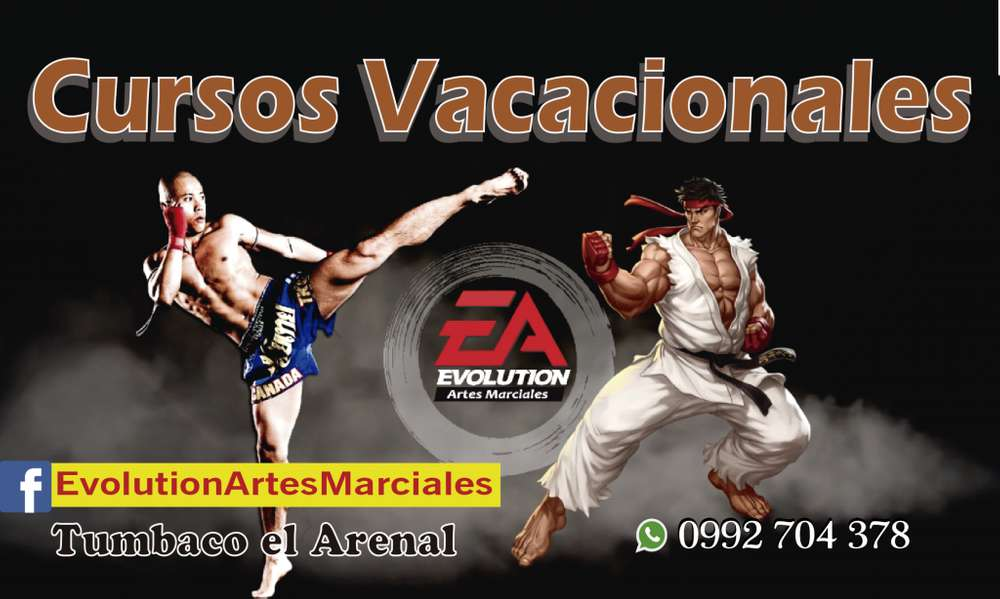 Cursos Vacacionales <strong>arte</strong>s Marciales Tumbaco