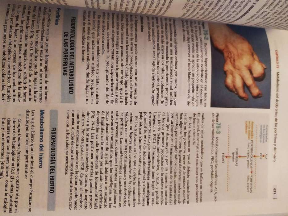 Libro de Semiologia Y Fisiopatologia
