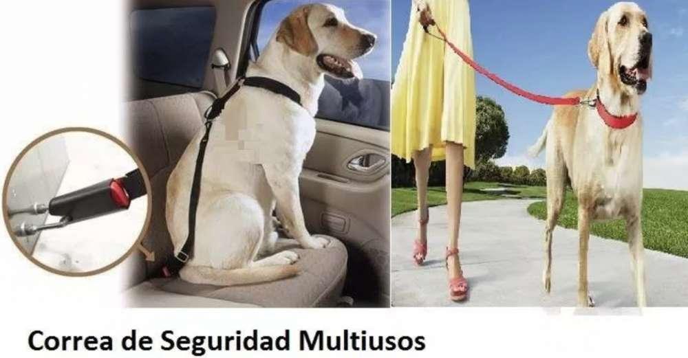 Correa Para Perros para Cinturón Seguridad Para Autos Gruponatic San Miguel Surquillo Independencia La Molina 941439370