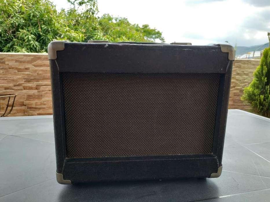 Amplificador Biscayne Y Pedal Zoom 505ii