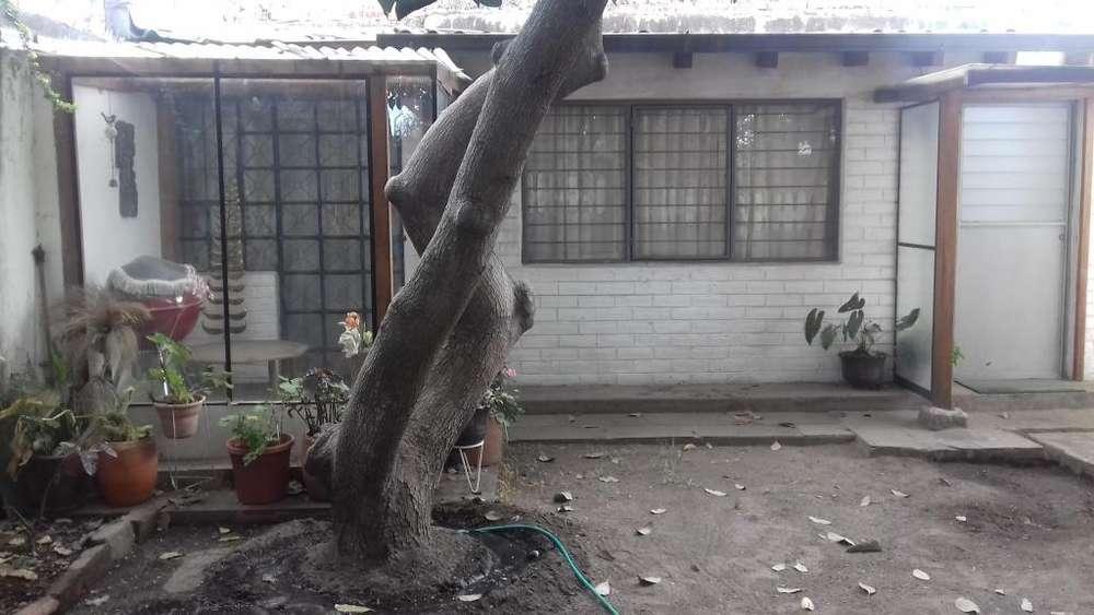Bonito Mini Departamento en Cumbaya-Tumbaco (arriendo)