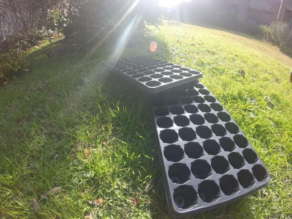 <strong>bandeja</strong> de siembra propagadora, germinadora 50 celdas