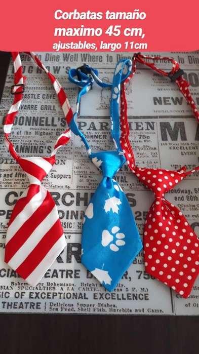 Corbata collar Perro Y Gato Pequeño
