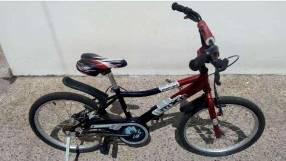 Bici Raleigh Rodado 20