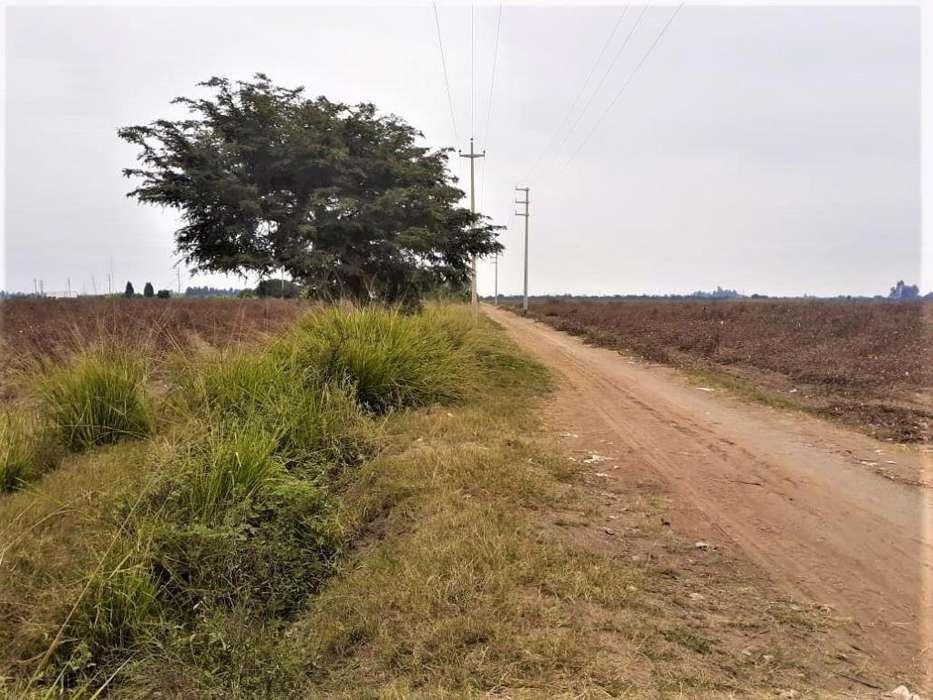 Venta de Terreno agrícola 12 has. en El Carmen - Sector Chacarilla -Chamorro
