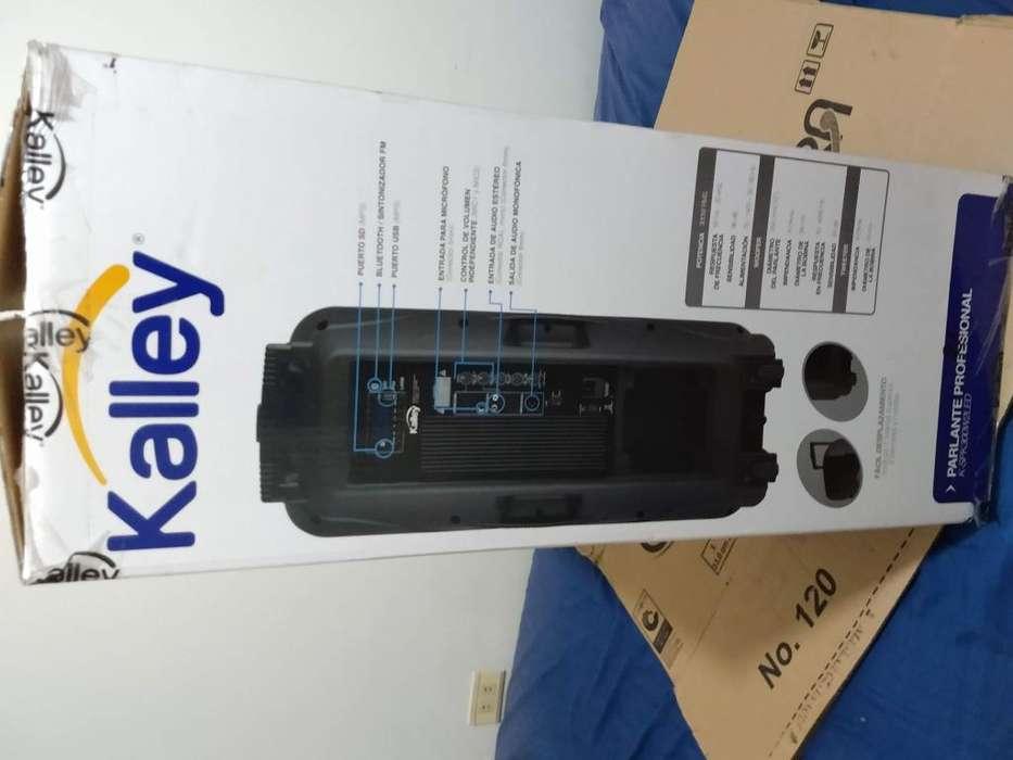 Vendo equipo de sonido portatil KALLEY