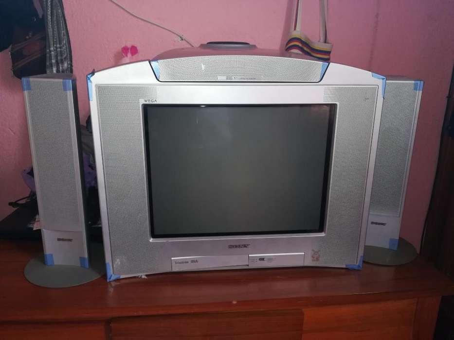 Vendo Tv Sony con Parlantes