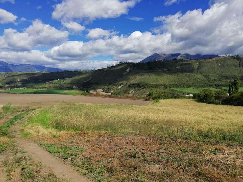 Venta de mas 30 hectáreas de Terreno en Imbabura Ideal para cualquier proyecto