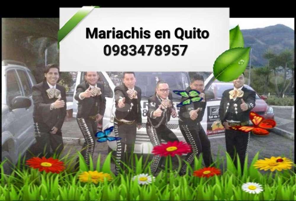 Mariachis en El Norte de Quito Servicios