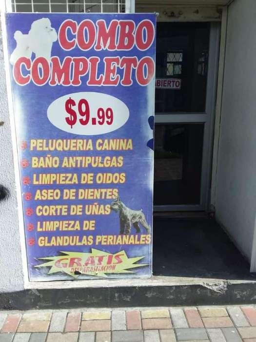 Galapagos Y San Miguel 0967027927
