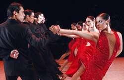 profesor de tango particular privado clases individuales