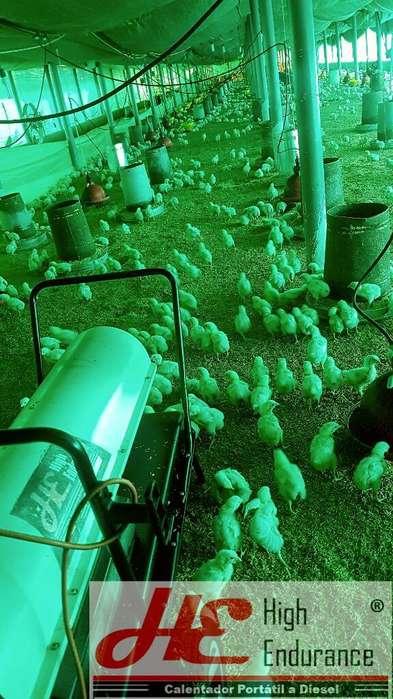 Criadora Diesel Granjas de Pollos