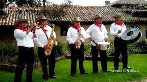 BANDA PAPAYERAS Y ORQUESTAS EN BOGOTA 3138200989