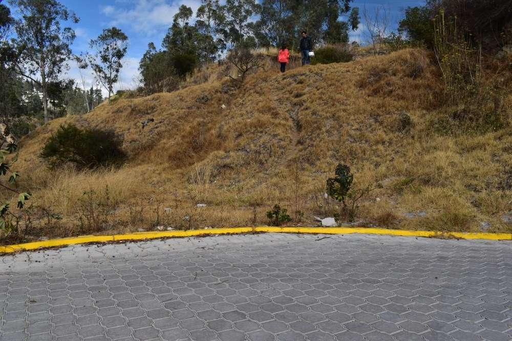 Venta de terreno en los Mastodontes, diagonal al colegio Americano