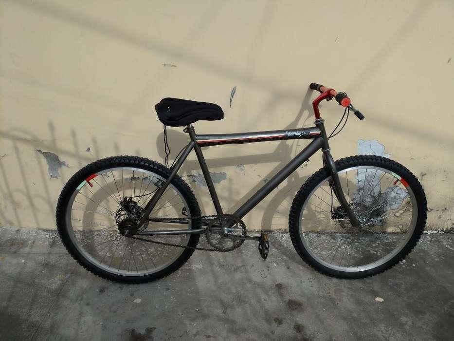 Bicicleta Urbana Single Speed Piñónlibre