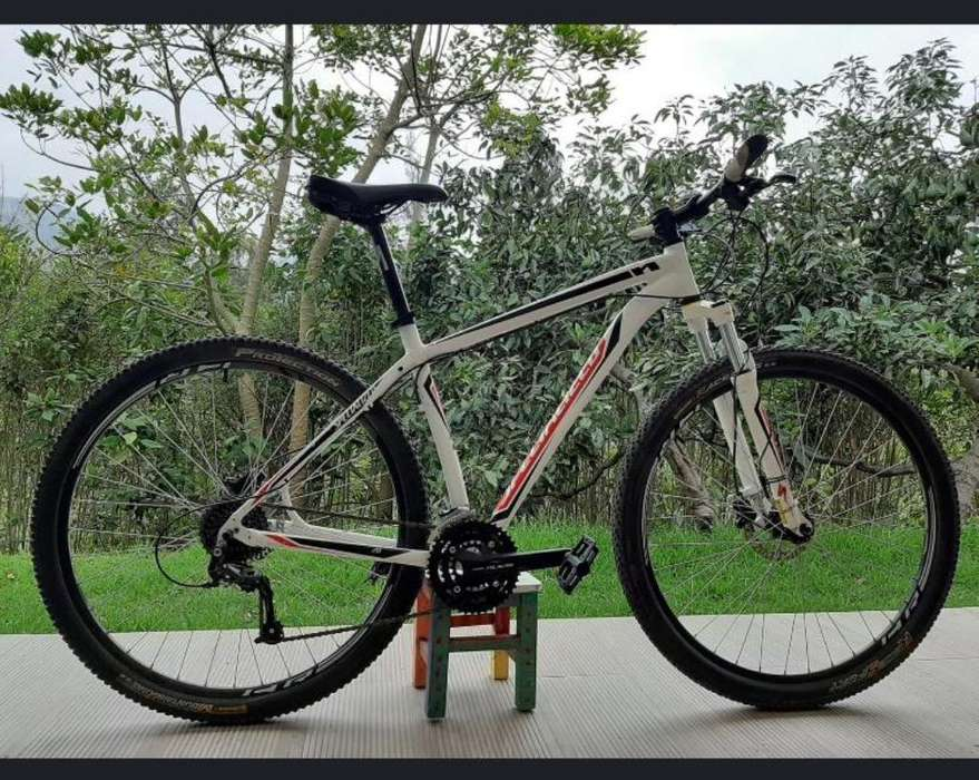 Bici Specialized Hard Rock L