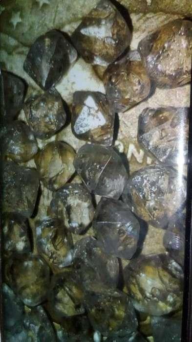 Vendo 14 quilates de Fluellite